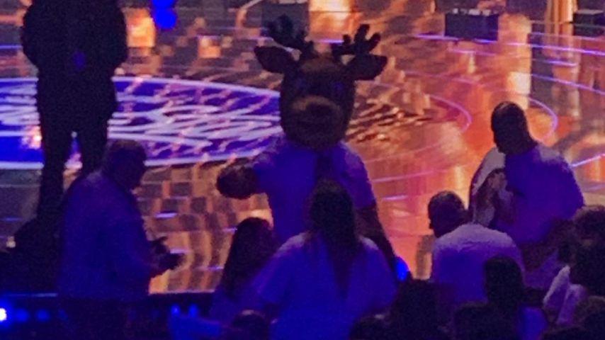 Rentier-Maskottchen beim DSDS-Finale 2019