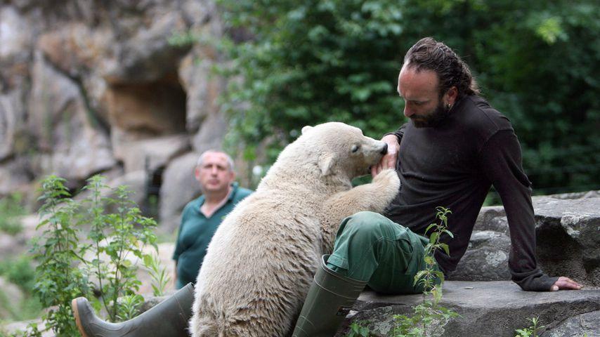 Eisbär Knut und Thomas Dörflein