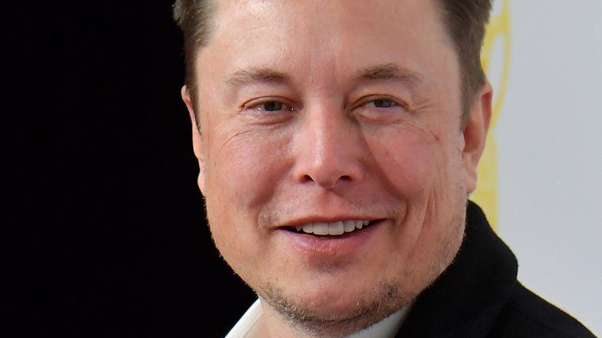 Elon Musk Dreier