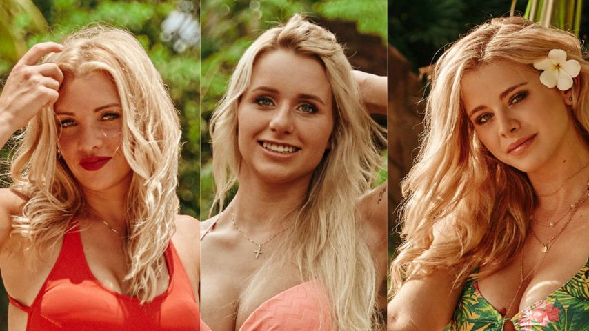"""""""Bachelor in Paradise""""-Girls: Welche Lady ist euer Liebling?"""