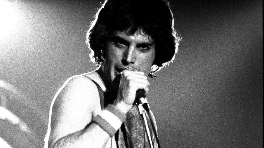 Freddie Mercury bei einem Konzert 1979