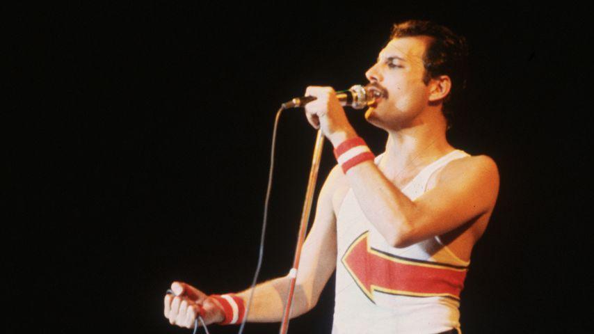 Musik-Legende Freddie Mercury: Heute ist sein 27. Todestag