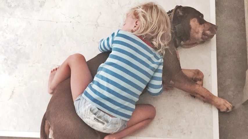 Kind & Hund kuscheln: So süß ist Gisele Bündchens Tochter