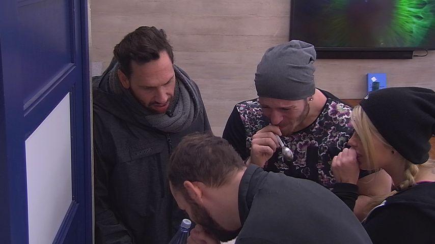 """Lügen-Zoff bei """"Big Brother"""": Bewohner ätzen gegen Beate"""