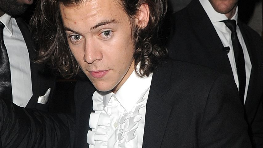Harry Styles: War das sein bisexuelles Coming-out?