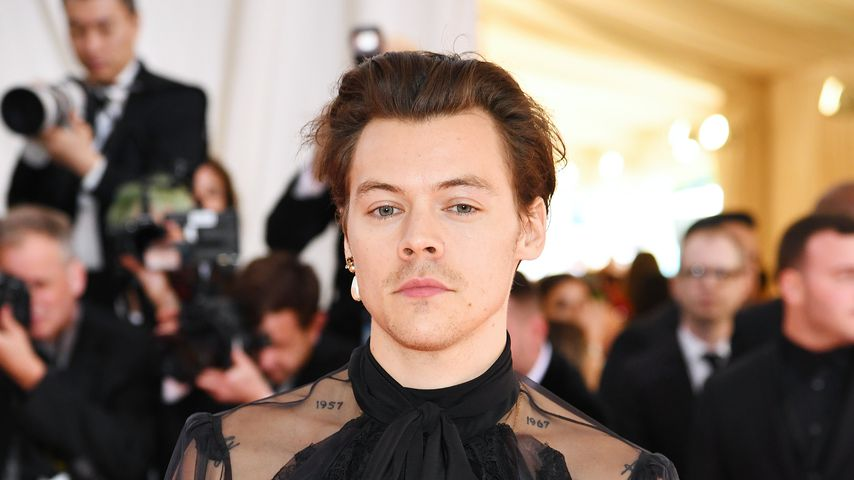 Bi-Outing? Harry Styles meist diskutierter Gast bei Met Gala