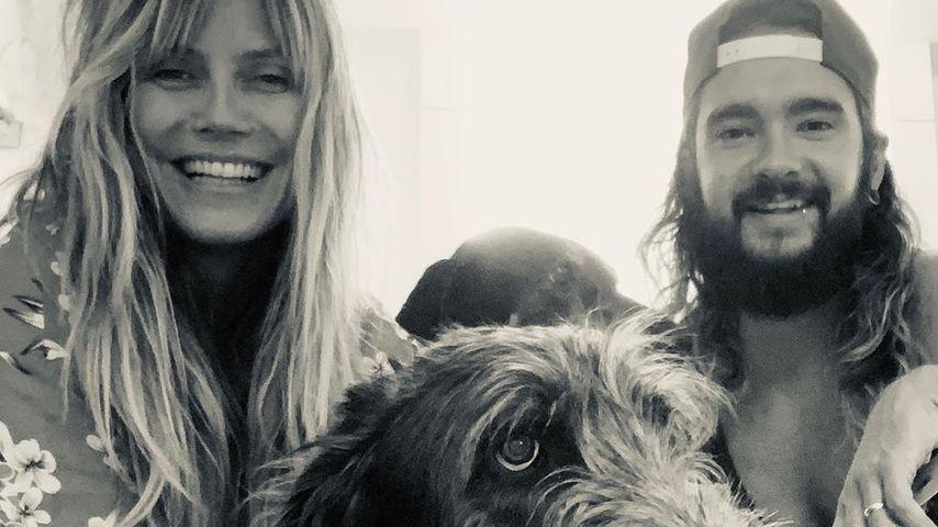Heidi Klum und Tom Kaulitz mit ihrem Hund Anton