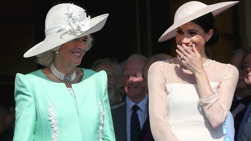 Palast-Verbündete? Meghan & Camilla verstehen sich prächtig!