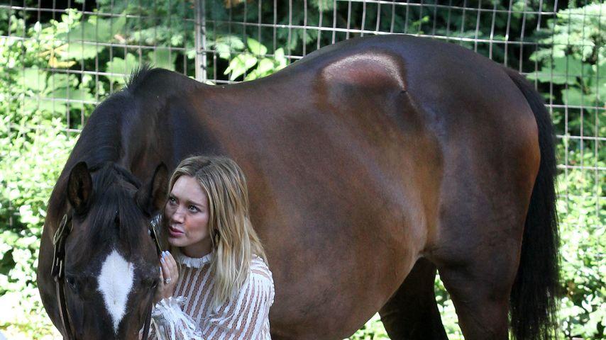 Hilary Duff dreht einen Film in New York