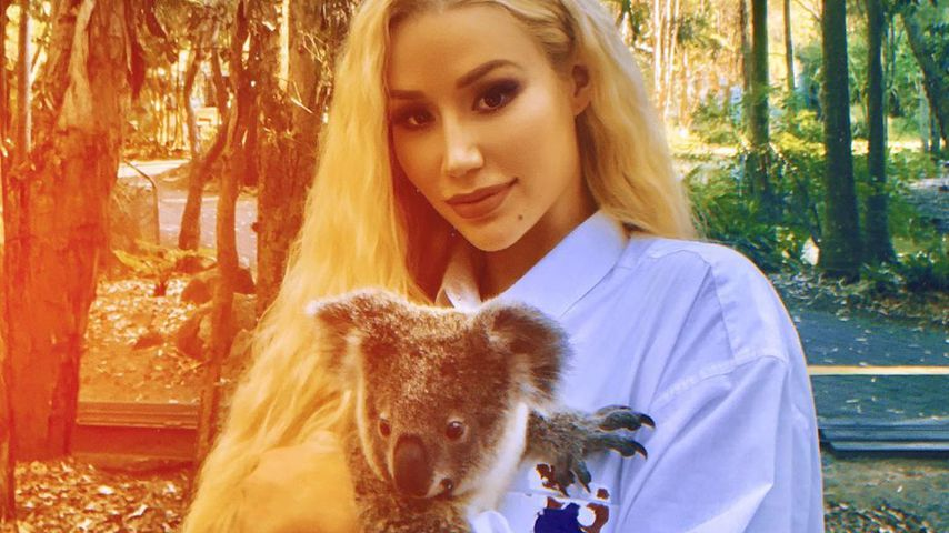 Koala-Kuscheln: Iggy Azalea sammelt Spenden für Tierklinik
