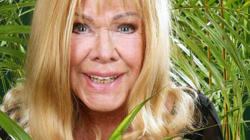 Sommer-Dschungelcamp: Ingrid van Bergen steht im Finale!