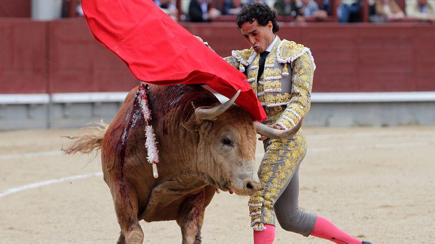 Ivan Fandiño beim Stierkampf in Madrid