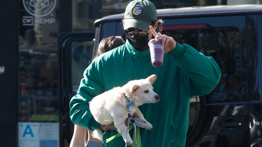 Zusammen oder nicht? Jacob Elordi trägt Kaia Gerbers Hund