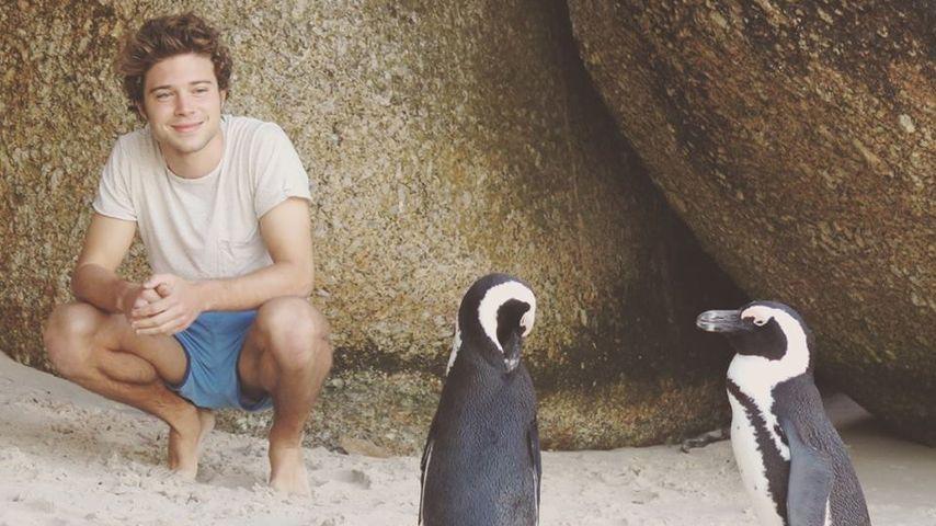 Tierischer Südafrika-Trip: Jascha Rust chillt mit Pinguinen