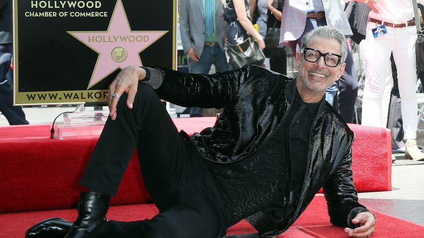 Glücklich: Jeff Goldblum bekommt Stern auf dem Walk of Fame