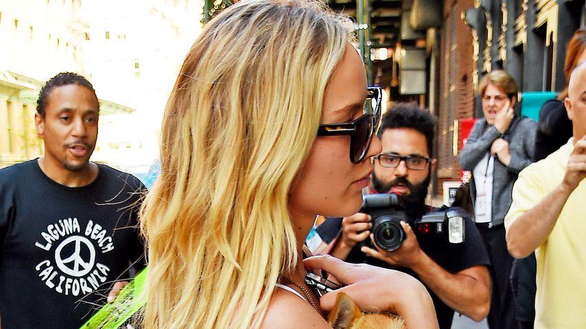 Hunde-Mutti: Hier beschützt Jennifer Lawrence ihre Pippi
