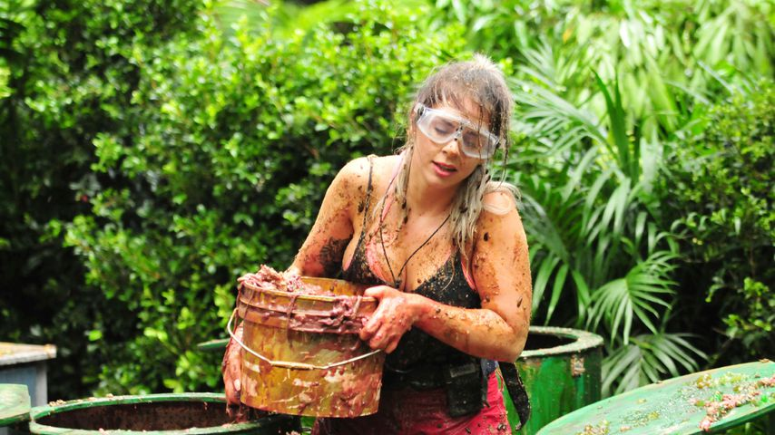 Stink-Dusche & Alpaka-Sehnsucht: Wer regiert den Dschungel?