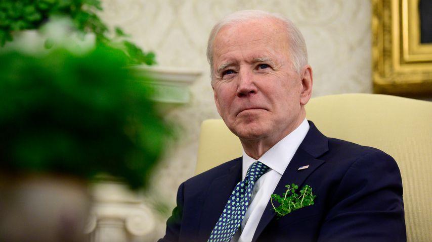 """Nach """"Beißvorfall"""": Bidens Hunde zurück im Weißen Haus"""