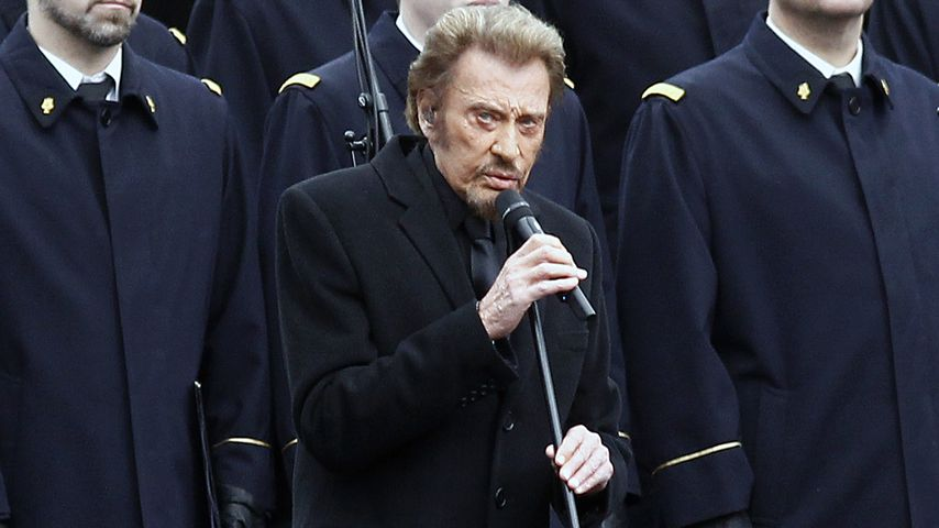 Johnny Hallyday, Musiker