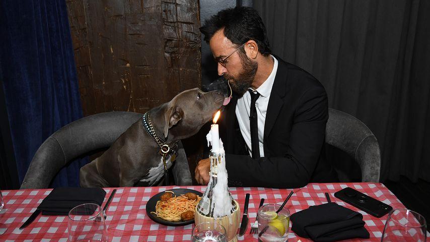 """Wie """"Susi & Strolch"""": Justin Theroux futtert Nudeln mit Hund"""