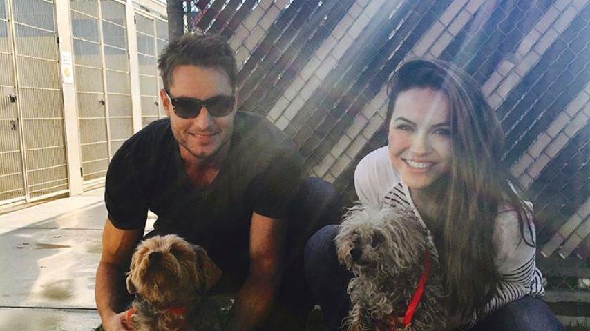 Justin und Chrishell Hartley mit ihren Hunden