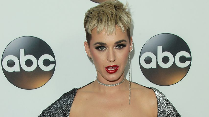 Katy Perry, Musikerin
