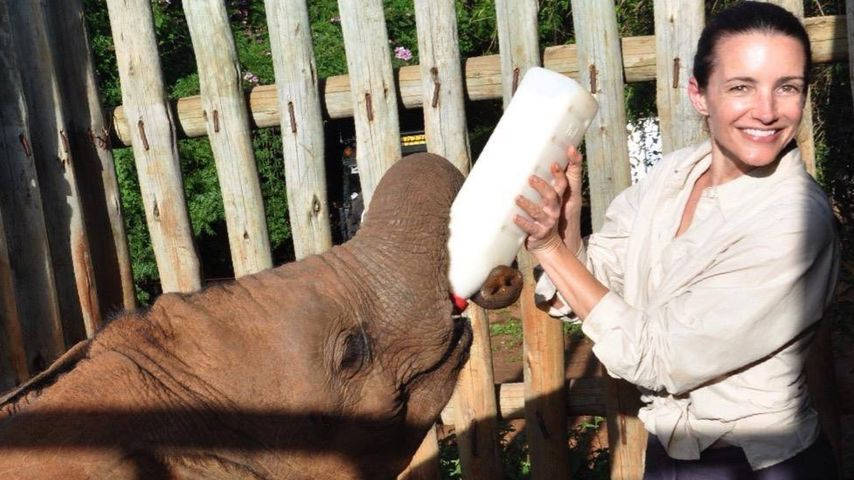 Elefanten-Freundin: Kristin Davis kuschelt mit Dickhäuter