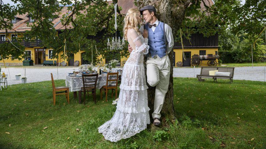 """""""Sturm der Liebe""""-Überraschung: Diese Stars kehren zurück!"""