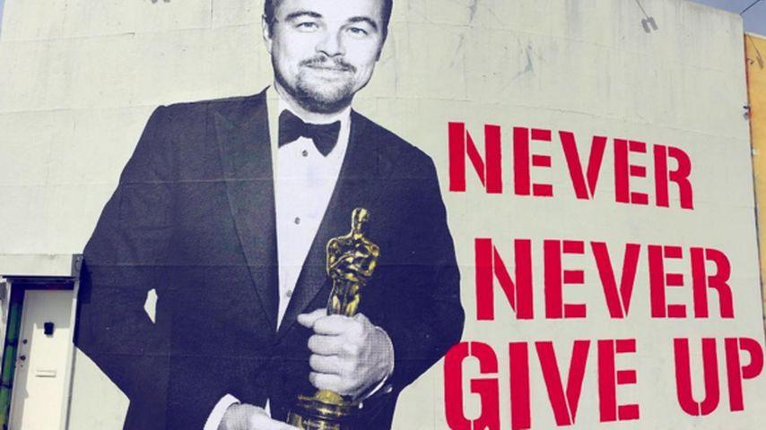 Oscar-Ehre: Überlebensgroßer Street-Art-Leo ziert L.A.
