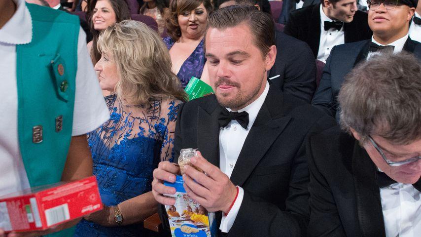 Keks-Alarm bei Oscars: Leo DiCaprio wird zum Internet-Hit!