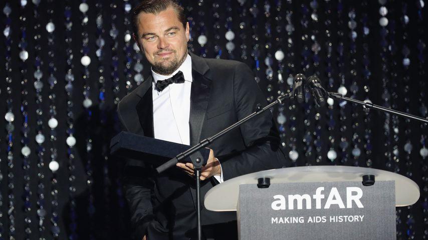 Neben Leos Triumph: Das sind die weiteren Oscar-Sieger!
