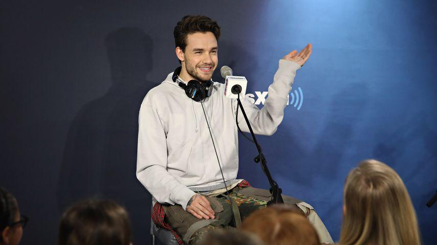 Nach Harry Styles: 1D-Star Liam Payne kündigt Album an