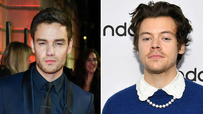 Das hält Liam Payne von Harry Styles' Vogue-Cover im Kleid