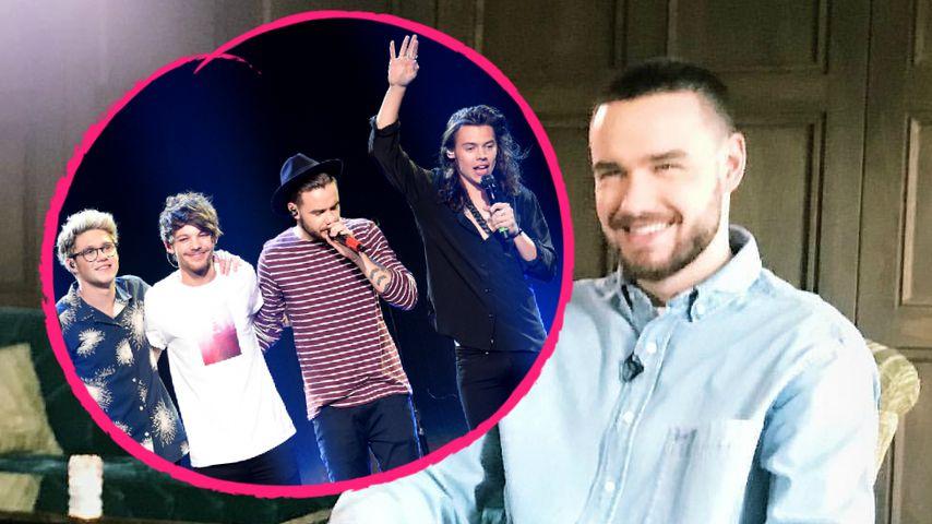 One Direction-Reunion? Liam Payne spricht endlich Klartext!