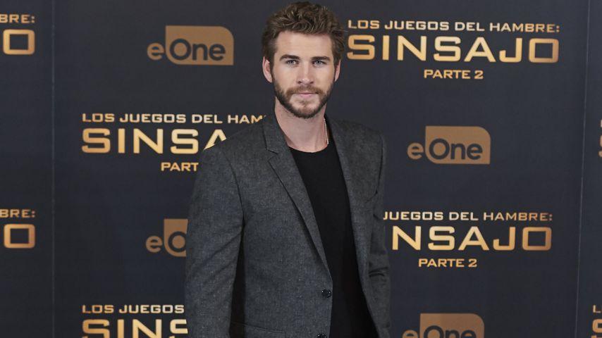Liam Hemsworth, Filmstar