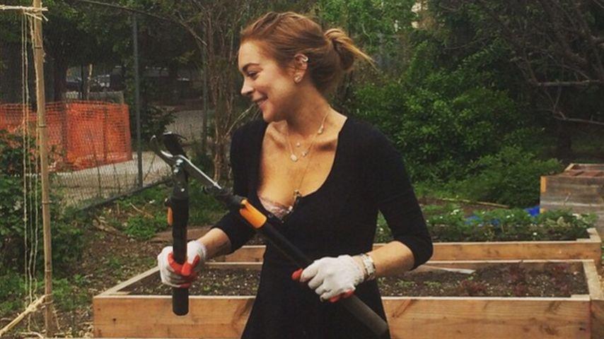 Lindsay Lohan: Aufgebrezelt für die gemeinnützige Arbeit