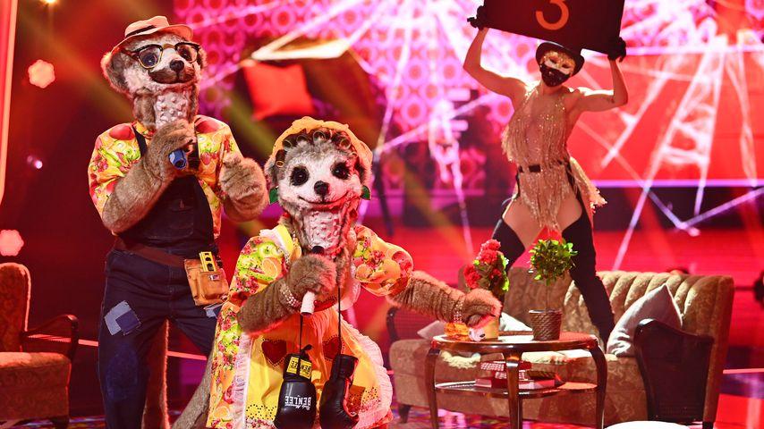 """Lucas Cordalis und Daniela Katzenberger als Erdmännchen im """"The Masked Singer""""-Finale 2020"""