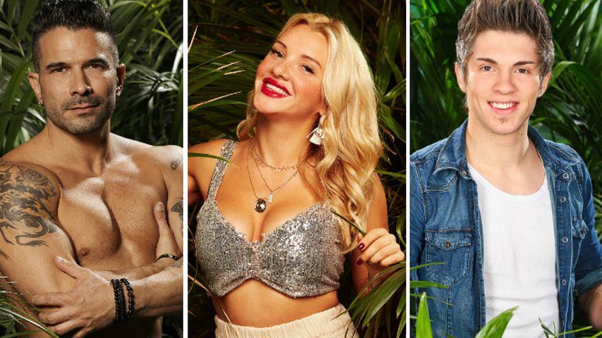 Dschungelkronen-Garant: Wird Evelyn mit Sprüchen gewinnen?