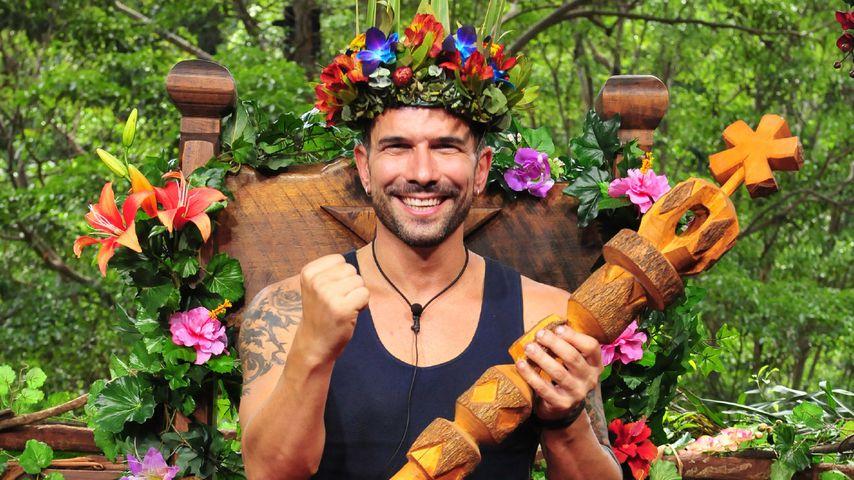 Dschungelkönig Marc Terenzi: So will er jetzt durchstarten!