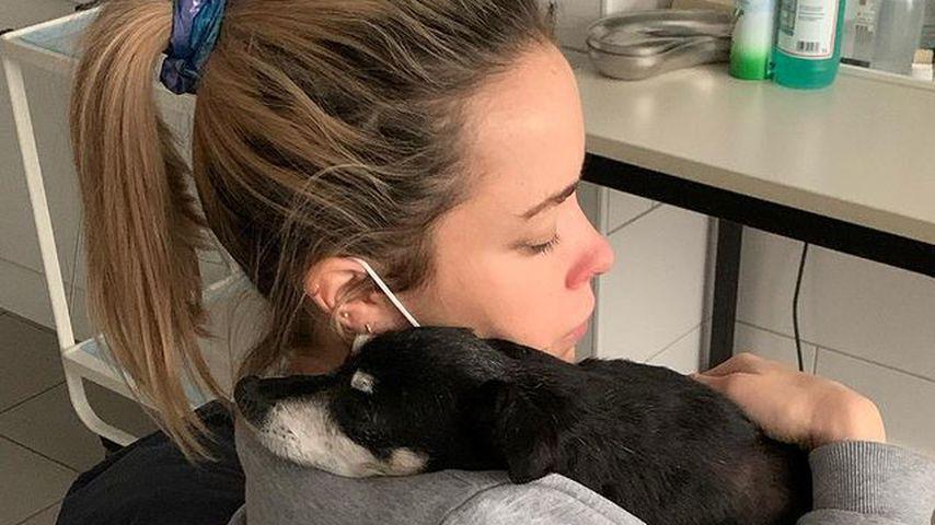 Nach Geburt der Tochter: Marina Hoermanseders Hund gestorben