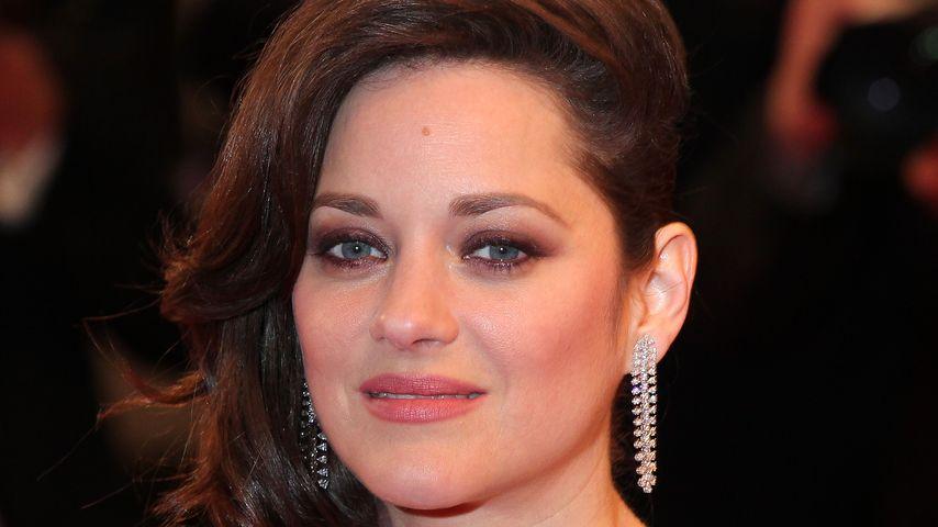 Affäre mit Brad Pitt? Gerüchte erschüttern Marion Cotillard
