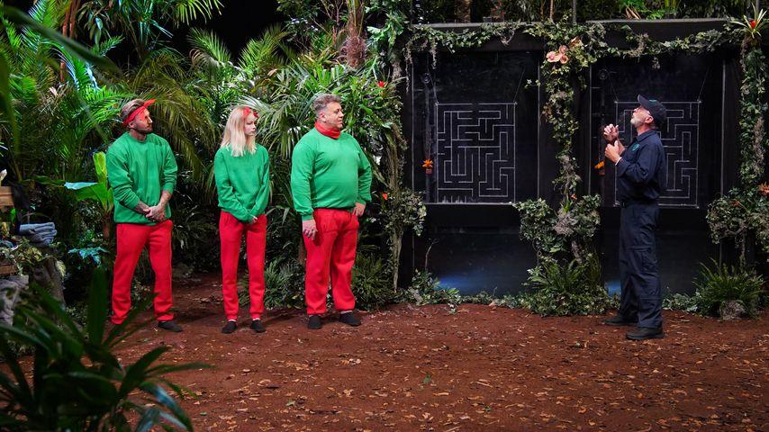 """Mike Heiter, Zoe Saip, Frank Fussbroich und Dr. Bob bei """"Ich bin ein Star – Die große Dschungelshow"""""""