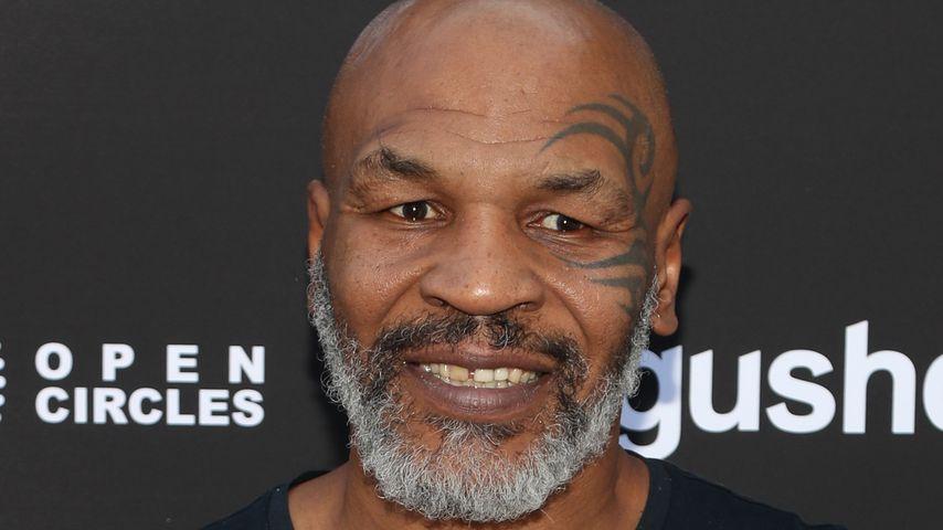 Mike Tyson, Boxprofi