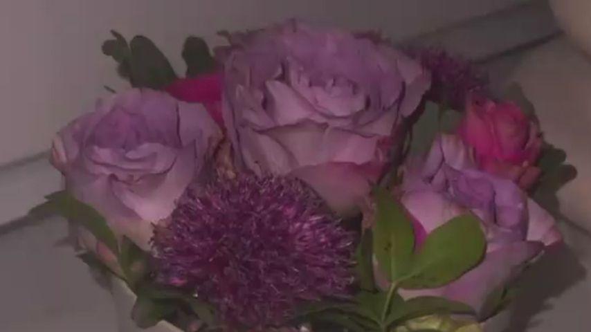 Mischa Mayers Blumen für Samantha Abdul
