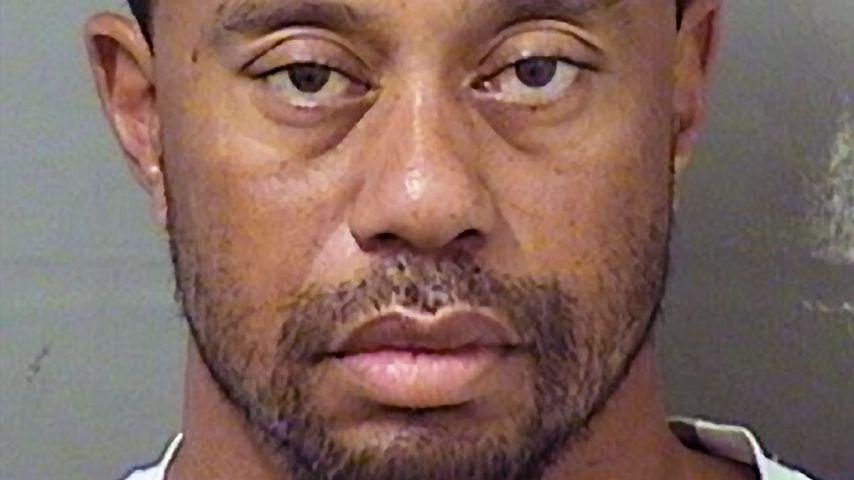 Mugshot von Tiger Woods