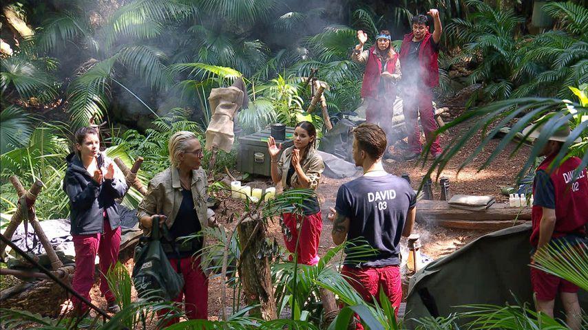 Dschungelcamp Prämie