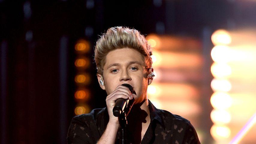 Niall Horan bei den American Music Awards 2015