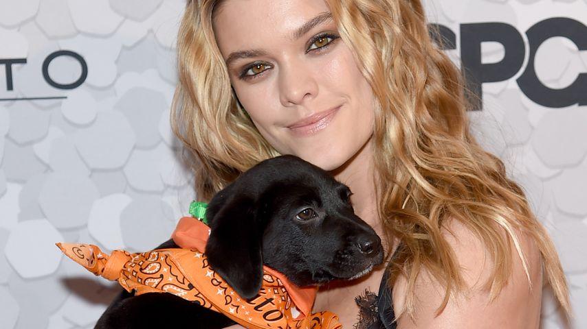 Drollig! Nina Agdal mit süßem Hundewelpen auf Red Carpet