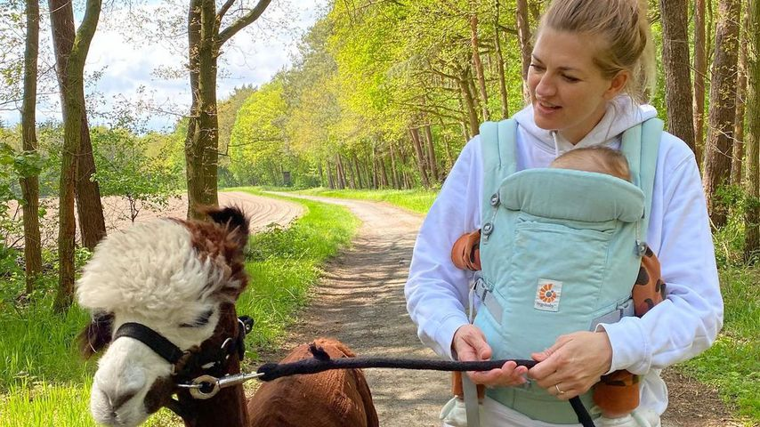 Süßer Anblick: Nina Bott und Baby Lobo wandern mit Alpakas