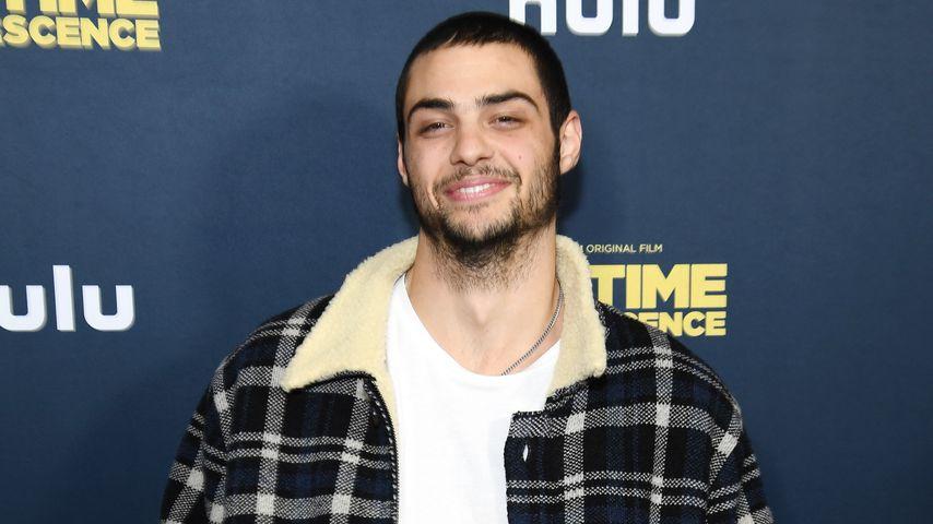"""Noah Centineo bei der Premiere von """"Big Time Adolescence"""" 2020"""